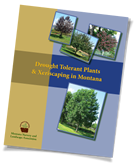 Drought Tolerant Plants in Montana Booklet
